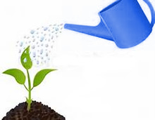 advertising is like water for a plant grow your business Welcome to Restoration Advertising!